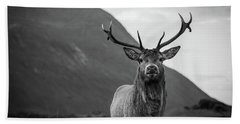 The Stag.  Beach Towel