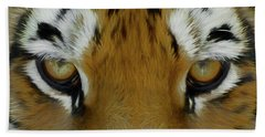 The Stare Da Beach Towel by Ernie Echols