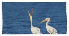 Beach Towel featuring the photograph The Stretch by Kim Hojnacki