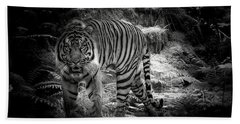Sumatran Tiger  Beach Sheet