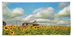 The Sunflower Farm Beach Towel by Darren Fisher