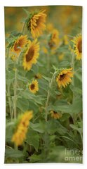 The Sunflower Patch Beach Sheet