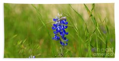 Beach Towel featuring the photograph The Texas Bluebonnet by Kathy White