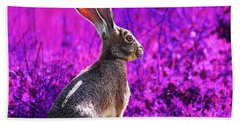 The Tortoise And The Hare . Magenta Square Beach Towel
