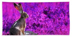 The Tortoise And The Hare . Magenta Beach Towel