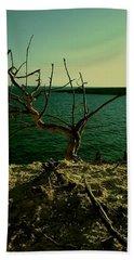 The Tree Beach Sheet