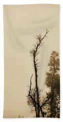 The Trees Against The Mist Beach Towel