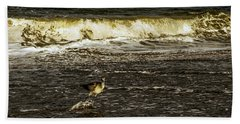 The Wading Willet  Beach Towel