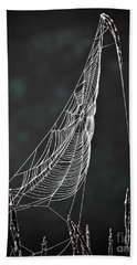 Beach Towel featuring the photograph The Web by Tom Cameron