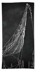 The Web Beach Towel by Tom Cameron