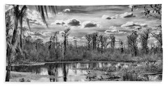 Beach Towel featuring the photograph The Wetlands by Howard Salmon