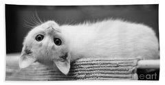 The White Kitten Beach Towel