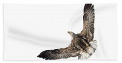 The Wings Of An Eagle 2018 Isolated Beach Towel