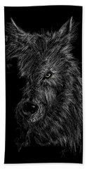 The Wolf In The Dark Beach Towel