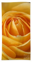 The Yellow Rose Beach Sheet