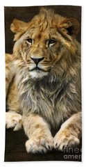 The Young Lion Beach Towel