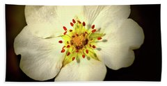 Thimbleberry Bloom  Beach Sheet