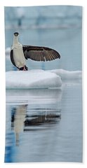 Beach Towel featuring the photograph This Way by Tony Beck