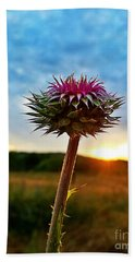 Beach Towel featuring the photograph Thistle At Sunrise by Maria Urso