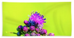 Beach Towel featuring the photograph Thistle June 2016.  by Leif Sohlman