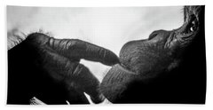 Thoughtful Chimpanzee Beach Towel by Marius Sipa