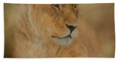 Thoughtful Lioness - Square Beach Towel