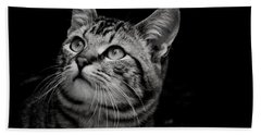 Beach Towel featuring the photograph Thoughtful Tabby by Chriss Pagani