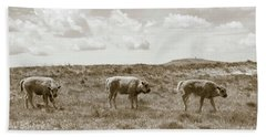 Beach Sheet featuring the photograph Three Buffalo Calves by Rebecca Margraf