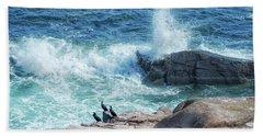 Three Cormorants At Monument Cove, Acadia National Park Beach Sheet