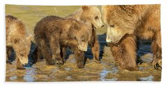 Three Cubs And Mother Drinking At The River Beach Towel