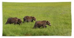 Three Cubs Moving On Beach Towel