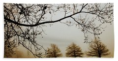 Beach Towel featuring the photograph Three Cypress In The Mist by Iris Greenwell
