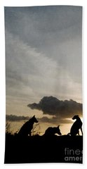 Three Dogs At Sunset Beach Towel