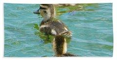 Three Ducklings Swimming Beach Towel