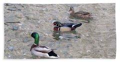 Three Ducks Beach Towel