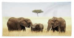 Three Elephant In Tall Grass In Africa Beach Towel