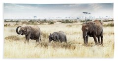 Three Elephants Walking In Kenya Africa Beach Sheet