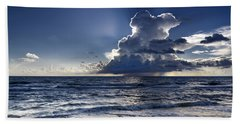 Beach Towel featuring the photograph Three Ibises Before The Storm by Steven Sparks