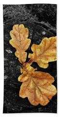 Three Leaves On Black Beach Towel