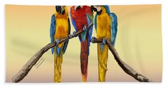 Beach Towel featuring the painting Three Macaws Hanging Out by Thomas J Herring