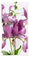 Three Mauve Japanese Irises Beach Towel