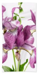 Three Mauve Japanese Irises Beach Sheet