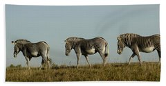 Three On The Horizon Beach Towel