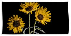 Three Sunflowers Light Painted On Black Beach Towel by Vishwanath Bhat