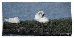 Three Swans Napping Beach Sheet