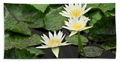 Three Water Lilies Beach Towel