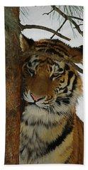 Tiger 2 Da Beach Sheet by Ernie Echols