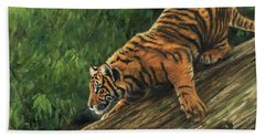 Tiger Descending Tree Beach Towel by David Stribbling