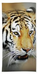 Tiger Eyes Beach Towel