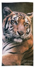 Tiger No 6 Beach Towel